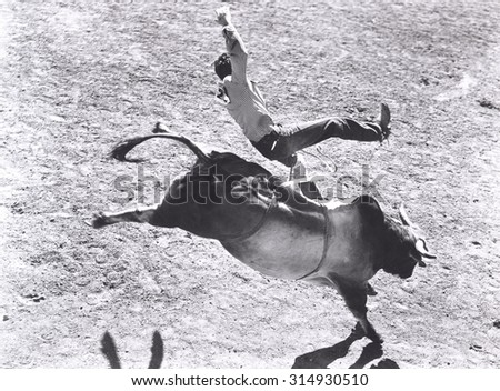 Bronco buster - stock photo
