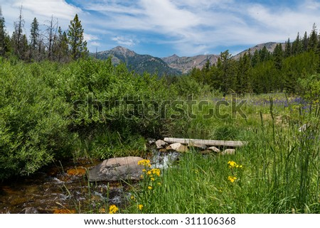 Brook flowing through meadow backed by the Boulder Mountains, Ketchum, Idaho, United States - stock photo