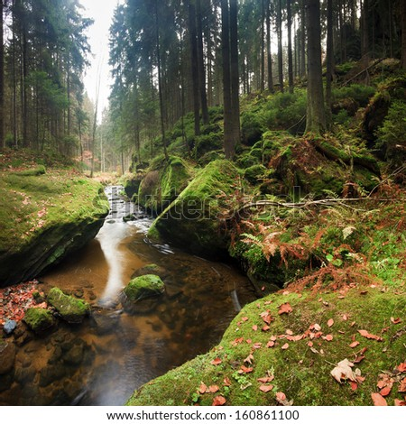 brook in autumn forest with big green boulders in Czech Switzerland - stock photo