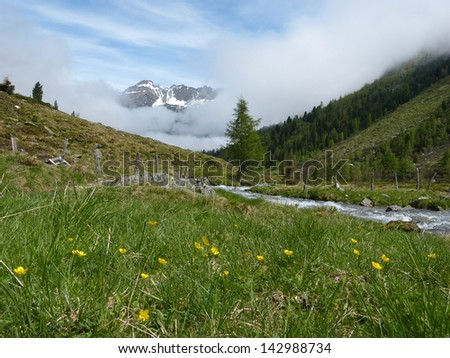 Brook in the mountains of the Tyrolean Alps - stock photo