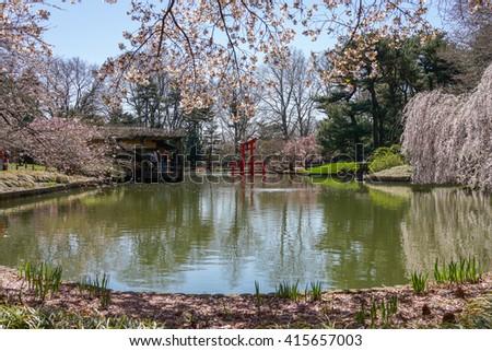 Botanical Garden Stock Images Royalty Free Images Vectors Shutterstock
