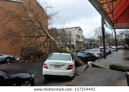 BROOKLYN, NY - OCTOBER 30: Tree felt down to the ground in the Sheapsheadbay neighborhood due to flooding from Hurricane Sandy in Brooklyn, New York, U.S., on Tuesday, October 30, 2012.