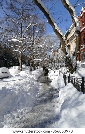 Brooklyn's Park Slope covered in snow after blizzard Jonas, 2016