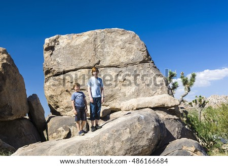 brothers pose on a rock at yoshua tree national park near park boulevard west entrance