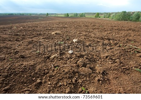 Brown agricultural soil of a field - stock photo