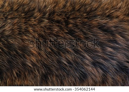 brown and black and white animal fell texture - stock photo