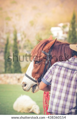 Brown and white horse with a cowboy use the illustrations and text - stock photo