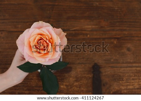 Brown background roses