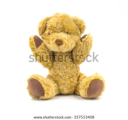Brown bear isolated on white background.