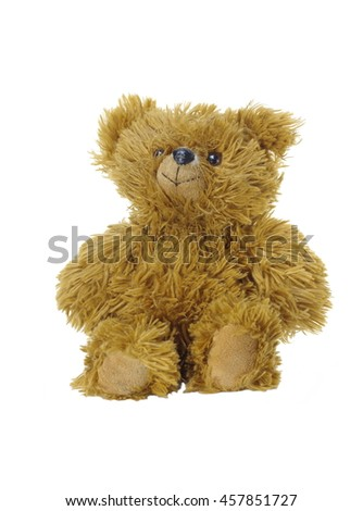 brown bear toy on white background