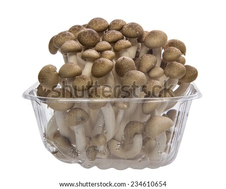 brown beech mushroom in the package with white background. - stock photo
