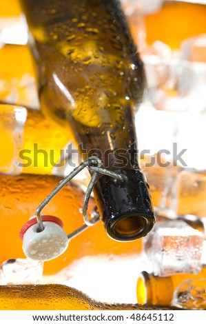 Brown beer bottles and clear ice . Cider bottle