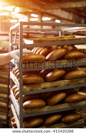 Brown bread loaves on rack. Hand touching bread on shelves. Big scale of production. Baked goods made for wholesale. - stock photo
