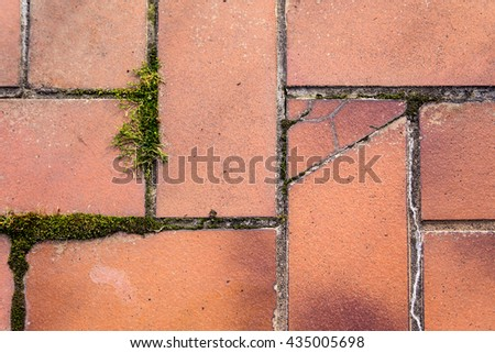 brown broken tiles with dirty joints and moss