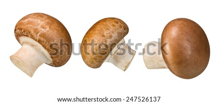 brown champignon mushrooms