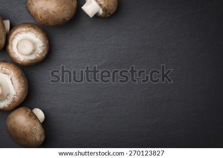 brown champignon mushrooms isolated on dark gray stone plate background with blank copyspace brown dark gray