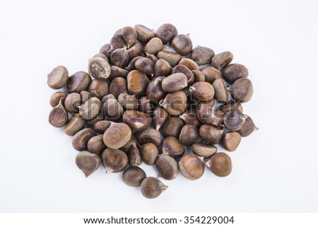 brown chestnut isolated on the white background - stock photo