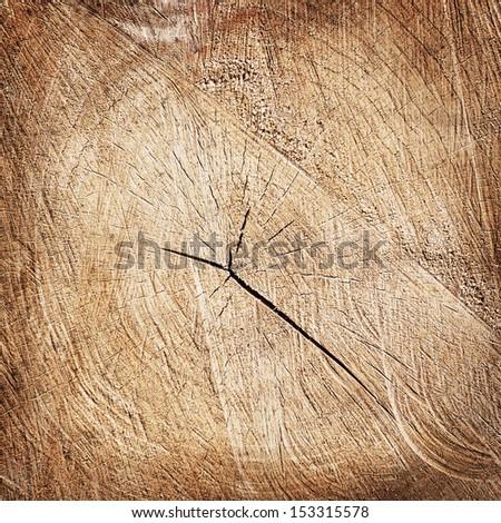 brown cracked tree stump background - stock photo