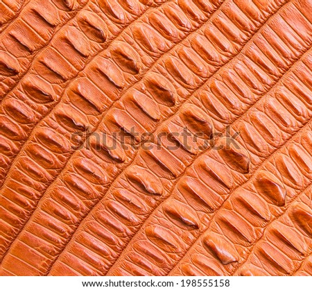 brown crocodile skin texture - stock photo