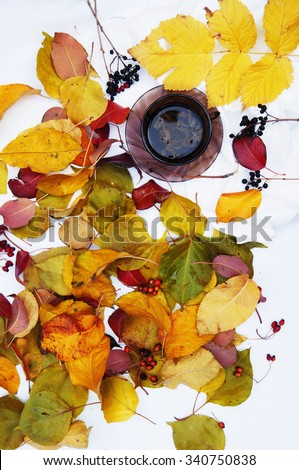 Brown cup with fresh green tea. Cup of tea on a white background,  top view,many  colourful autumn leaves, cup of tea surrounded by autumn leaves. Autumn background. Yellow and green leaves. Herbal  - stock photo
