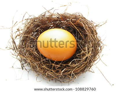 brown egg in a bird's nest, on white