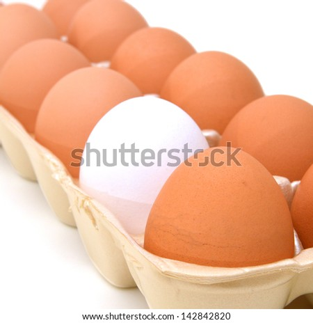 brown eggs in a carton package and one white egg - stock photo