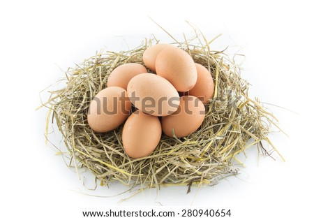 brown eggs in a nest isolated on white background