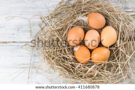 Brown eggs in hay, eggs in nest, hen eggs.  - stock photo