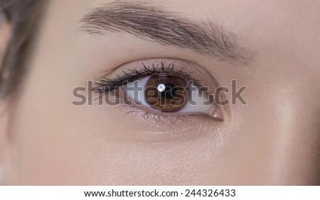 Brown eye of an attractive young adult woman