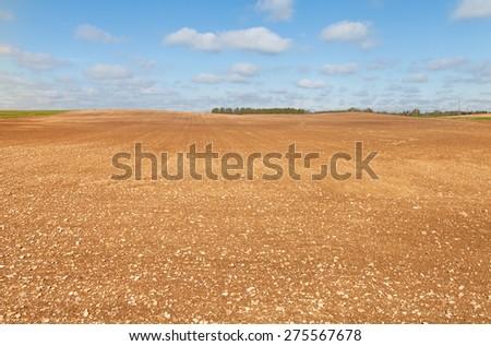 Brown field. - stock photo