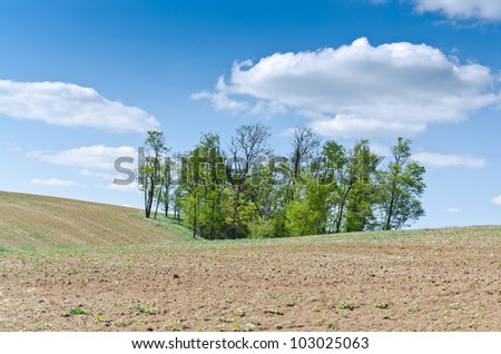 brown field background