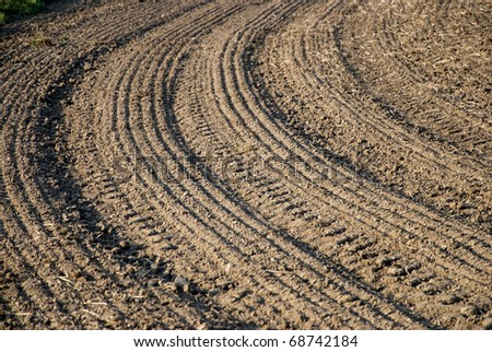 brown field with parallel pattern