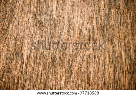 Brown fur for background usage - stock photo