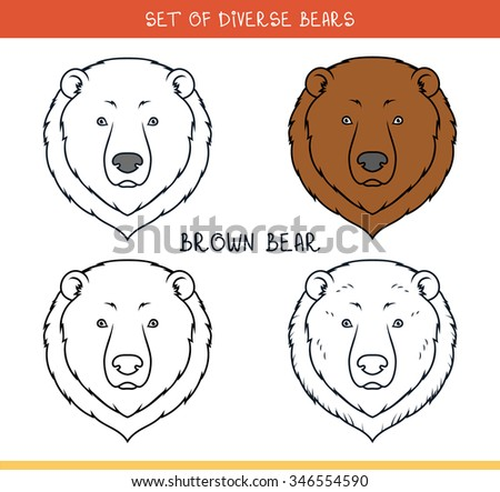 Brown grizzly bear. Set isolated heads of bear in color, lines. Heads for design. Template of heads. Hipster style. Animation bear. Elements for labels and advertizing production. Print for the press - stock photo