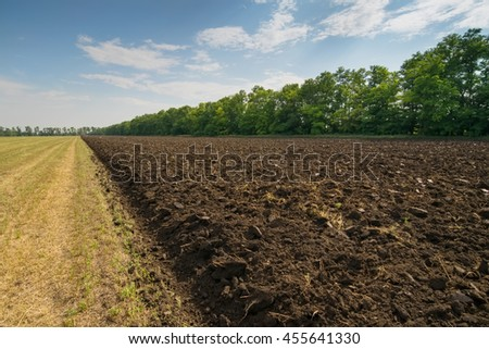 Brown ground in half-plowed field after harvest near forest belt at summer - stock photo
