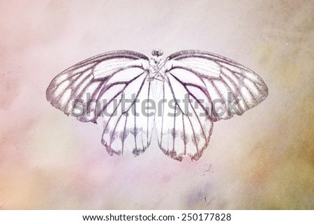 brown grunge butterfly background - stock photo