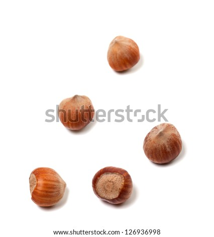 Brown hazelnuts on white background - stock photo