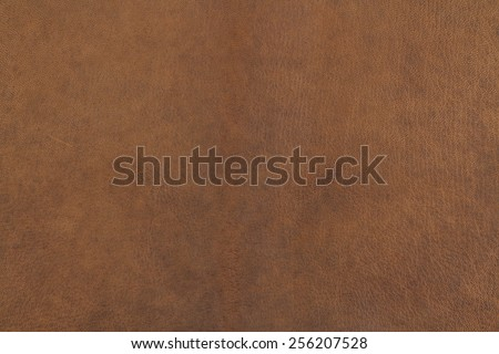 brown leather - stock photo