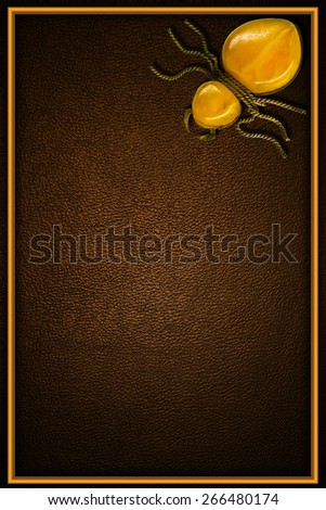 brown leather background in frame with amber spider