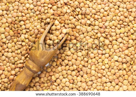 Brown lentils and a wooden scoop. top view