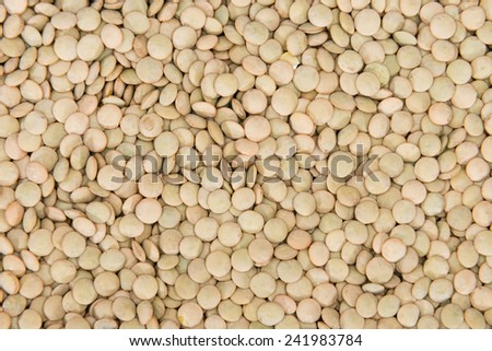 Brown Lentils for use as background image or as texture - stock photo