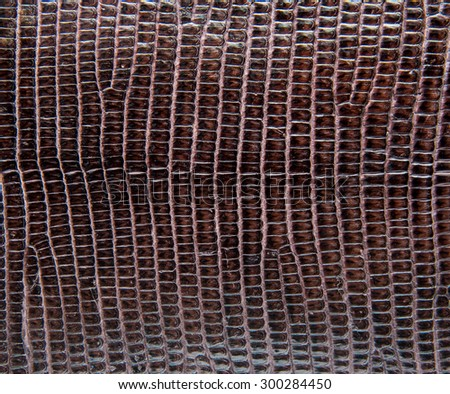Brown lizard skin, abstrat leather texture for background.  - stock photo