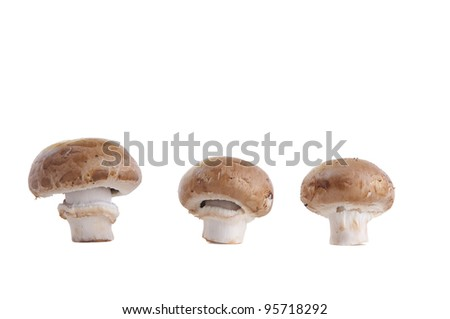 brown mushrooms isolated on white - stock photo