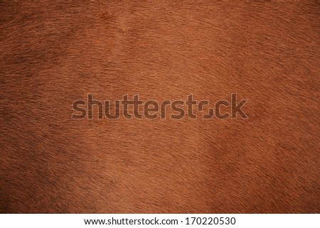 Brown natural cow fur texture - stock photo