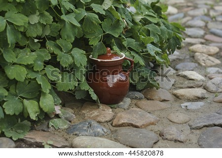 brown old jug near green flower and stones in garden  close up - stock photo