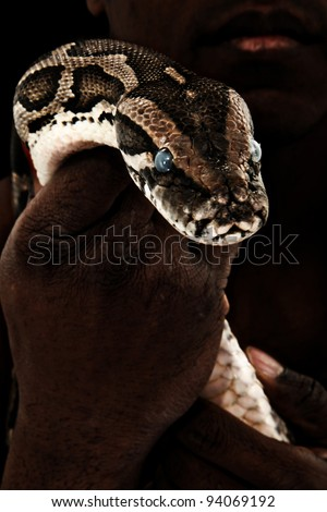 Brown Python in Man's Hand over Black - stock photo