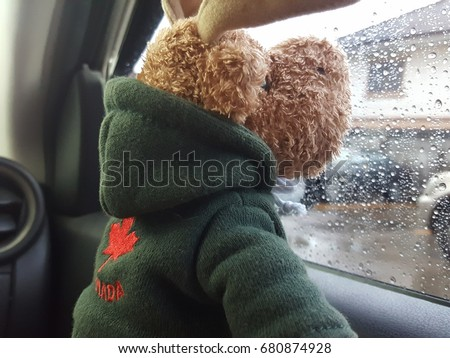 Brown reindeer doll with window of car on a rainy day.