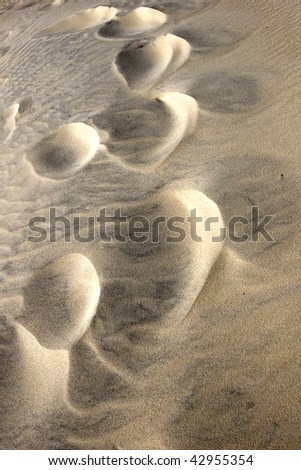 brown sand background in dunes