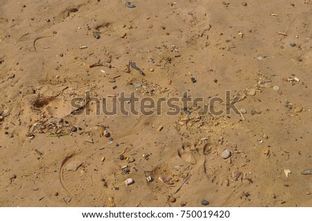 brown sand surface useful as a background