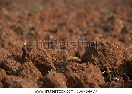 Brown soil of an agricultural field(selective focus)